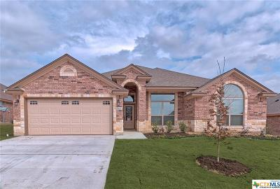 Killeen Single Family Home For Sale: 7802 Zircon Drive