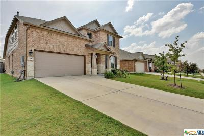 Buda TX Single Family Home For Sale: $309,000
