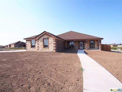 Bell County Single Family Home For Sale: 4010 Joe Bozon Drive