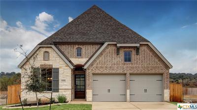 San Antonio Single Family Home For Sale: 14902 Costa Leon
