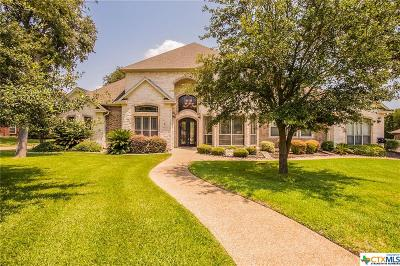 Belton Single Family Home For Sale: 280 Eagle Landing