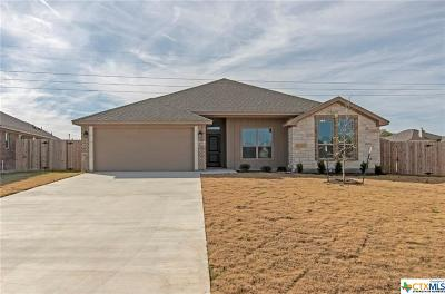Temple TX Single Family Home For Sale: $255,000