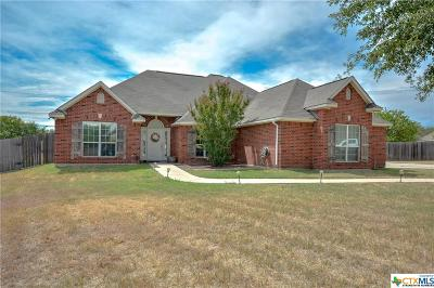 Belton Single Family Home For Sale: 417 Bellwood