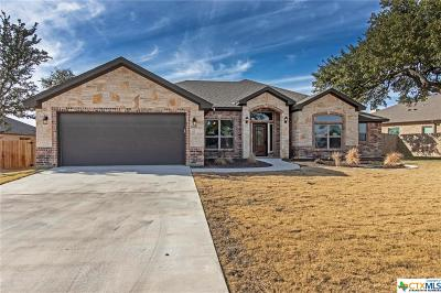 Belton Single Family Home For Sale: 1687 Lacy Ridge