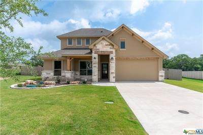 Belton Single Family Home For Sale: 2977 Stillman