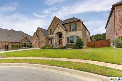 New Braunfels Single Family Home For Sale: 540 Oak Brook Drive