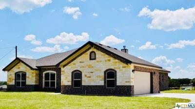 Kempner Single Family Home For Sale: 274 County Road 4709