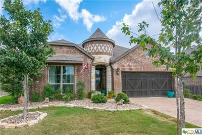 New Braunfels Single Family Home For Sale: 504 Mission Hill