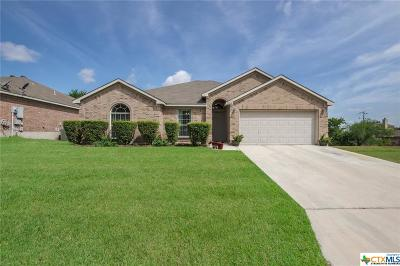 New Braunfels Single Family Home For Sale: 1764 Jasons North Court