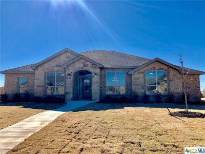 Salado Single Family Home For Sale: 3105 Saint Luke