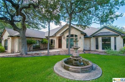 New Braunfels TX Single Family Home For Sale: $599,000