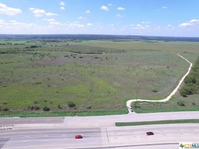 Salado Commercial For Sale: 23234 Ih 35