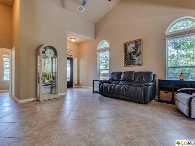 San Marcos Single Family Home For Sale: 303 Parkside