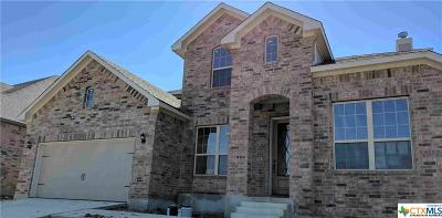 New Braunfels TX Single Family Home For Sale: $384,990