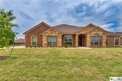 Harker Heights, Nolanville Single Family Home For Sale: 6008 Brandy Drive