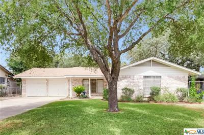 San Antonio Single Family Home For Sale: 9802 Astronaut Drive