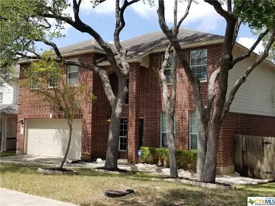 San Antonio Single Family Home For Sale: 26019 Upton