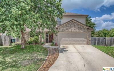 New Braunfels Single Family Home For Sale: 212 Hondo