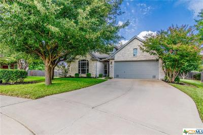 Pflugerville Single Family Home For Sale: 1700 Gypsum Court
