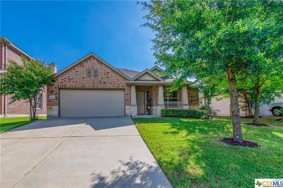 Pflugerville Single Family Home For Sale: 18637 Falcon Pointe Boulevard