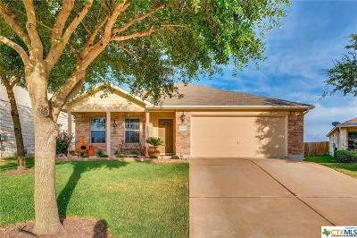 Pflugerville Single Family Home For Sale: 18209 Kermit