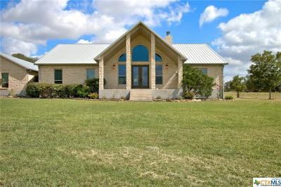 Seguin Single Family Home For Sale: 2419 Eden