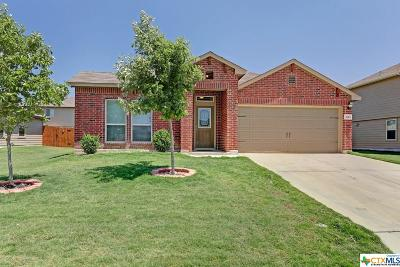Single Family Home For Sale: 2665 Lonesome Creek