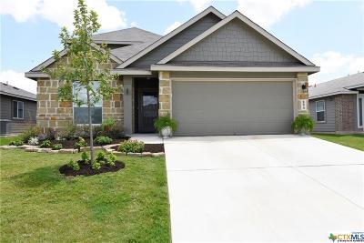New Braunfels Single Family Home For Sale: 894 Pumpkin Ridge