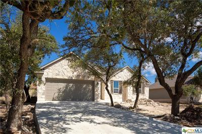 Wimberley Single Family Home For Sale: 16 Ridgewood Circle