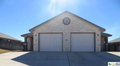 Killeen Single Family Home For Sale: 1402 Powder River Drive