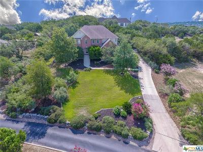 San Antonio Single Family Home For Sale: 716 Walder