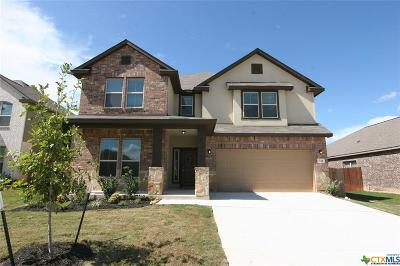 Cibolo Single Family Home For Sale: 716 Saddle Canyon