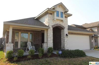 San Marcos Single Family Home For Sale: 418 Field Corn