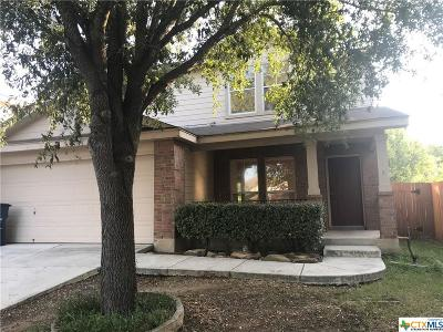 New Braunfels Single Family Home For Sale: 2671 Hunt Street