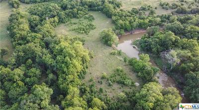 Coryell County Residential Lots & Land For Sale: Tbd Fm 2412