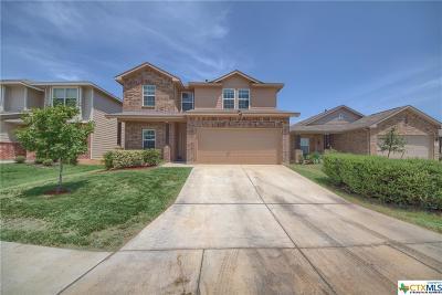 San Antonio Single Family Home For Sale: 9711 Belmore Cove