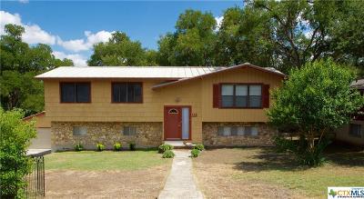 San Marcos Single Family Home For Sale: 113 Ridgeway Drive