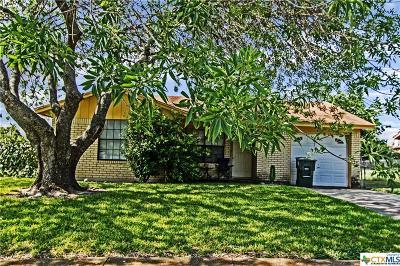 Single Family Home For Sale: 3810 Pilgram Drive