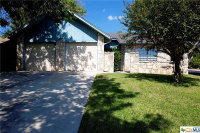Schertz Single Family Home For Sale: 3800 Overlook Drive
