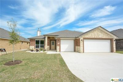 Belton TX Single Family Home For Sale: $273,750