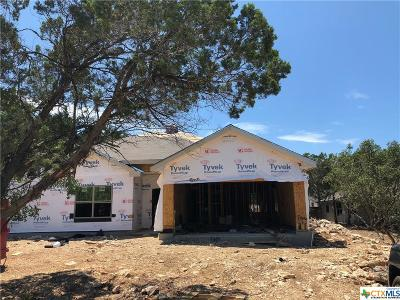 Canyon Lake Single Family Home For Sale: 2916 Westview