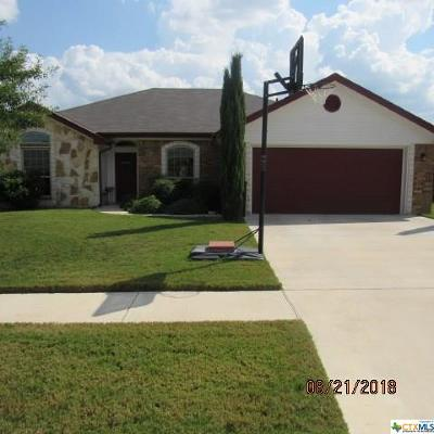 Killeen  Single Family Home For Sale: 504 W Little Dipper Drive