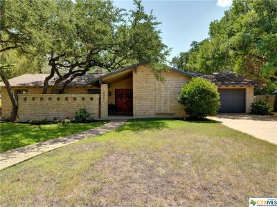 Austin Single Family Home For Sale: 4007 Greenhill