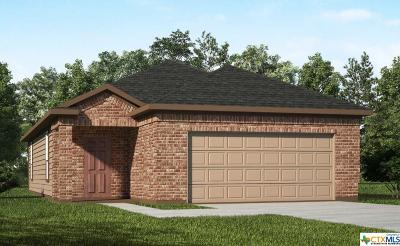 New Braunfels Single Family Home For Sale: 150 Buttercup Bend