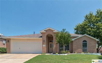 Harker Heights Single Family Home For Sale: 303 Canoe Drive