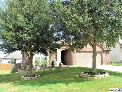 Kyle Single Family Home For Sale: 358 Bloomsbury
