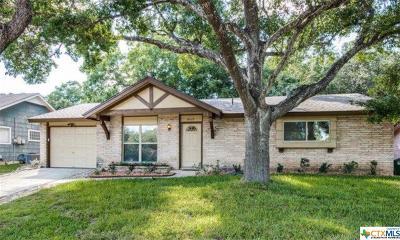 San Antonio Single Family Home For Sale: 4019 Ramsgate