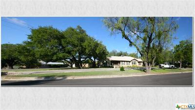 Lampasas Single Family Home For Sale: 310 S Porter