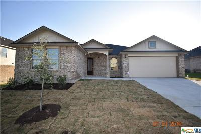 Killeen  Single Family Home For Sale: 7603 Melanite Drive