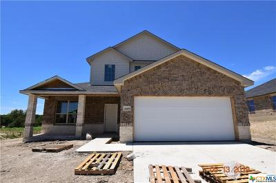 Killeen Single Family Home For Sale: 7605 Melanite Drive